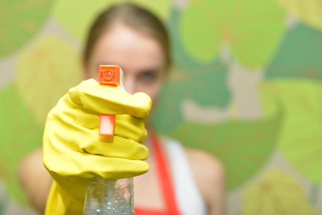 カビ掃除は大変!部屋のいたるところに生育するカビの対処法