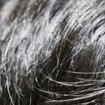 ワックスやスプレーではげる!?髪の健康を守る整髪料の使い方